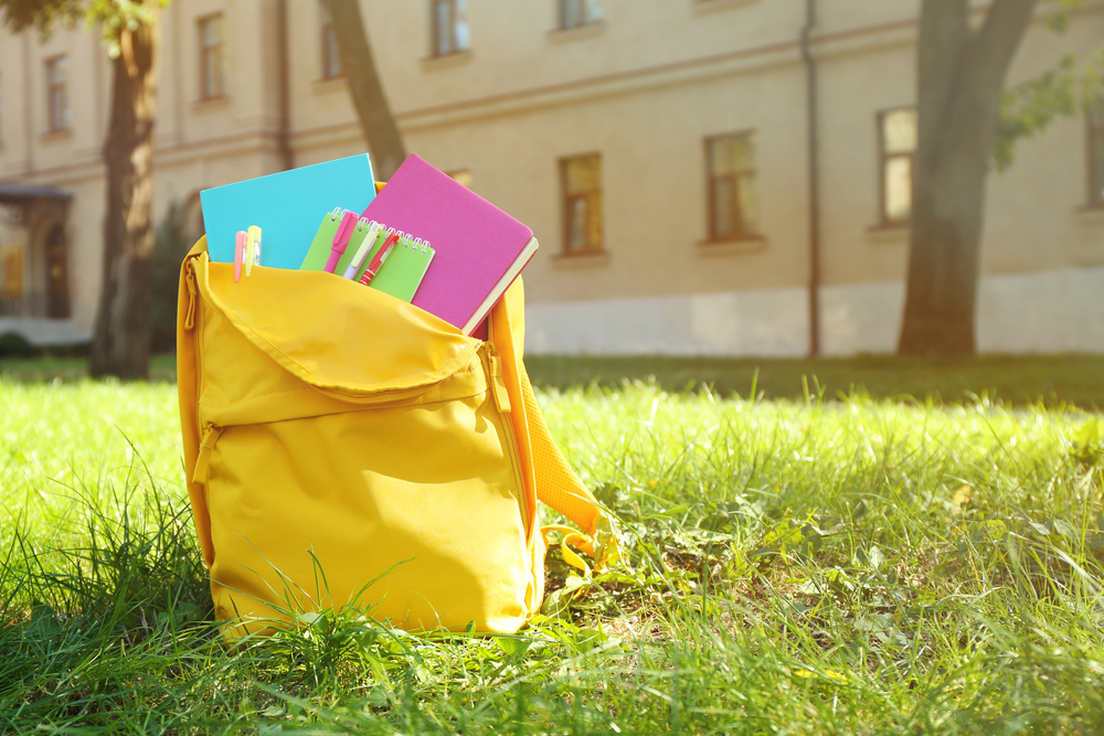 School backpack with accessories on green grass
